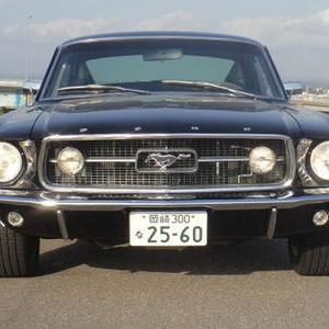 FORD MUSTANG FASTBACKのサムネイル