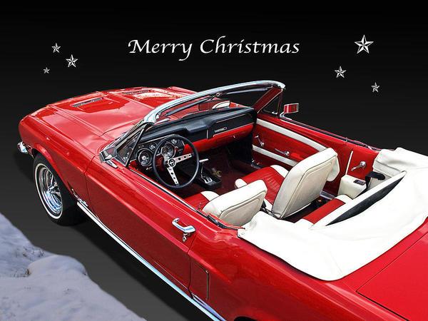 メリークリスマス・・・・!