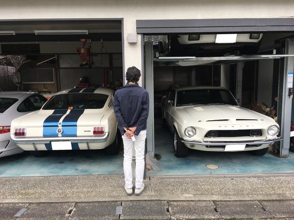 京都府京都市 河村様 1968 Shelby GT-350のサムネイル