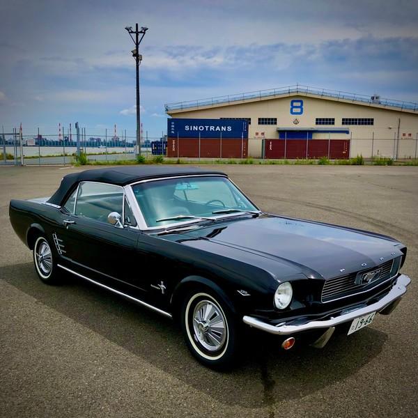1966 Mustang Convertible・・・・!
